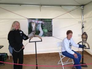 Longs Peak Scottish-Irish Highland Festival @ Estes Park Fairgrounds | Estes Park | Colorado | United States