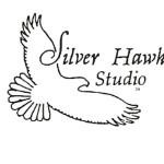 A Silver Hawk Studio LOGO w TM