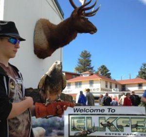 Elk Fest @ Bond Park | Estes Park | Colorado | United States