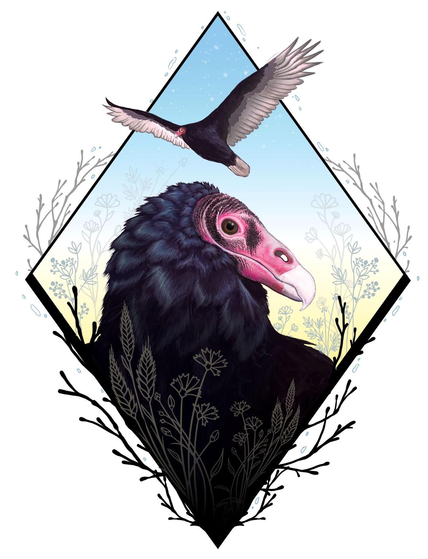 Virtual Vulture Gala